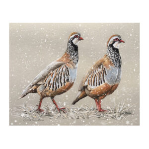 Pair of Partridge