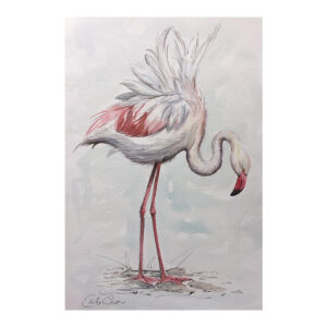 Flamingo - Watercolour