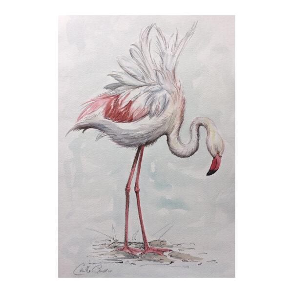 Flamingo - Watercolour